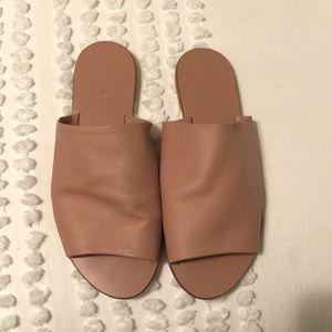Everlane blush pink slide on sandal